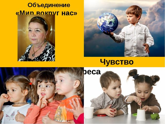 Объединение «Мир вокруг нас» ПДО Нахушева Л.Х. Чувство интереса