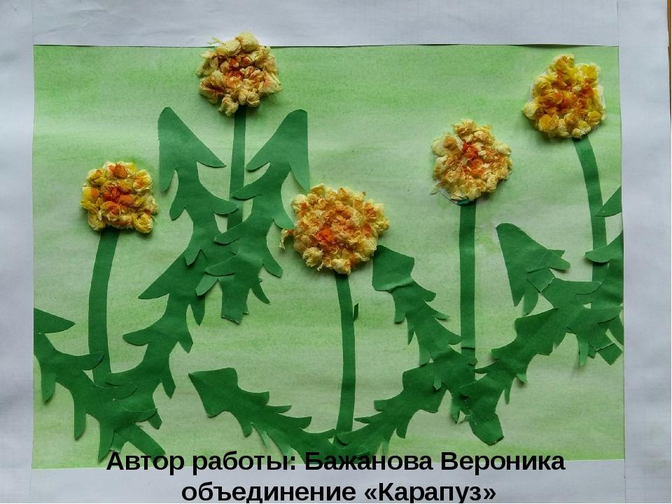Автор работы: Бажанова Вероника объединение «Карапуз»