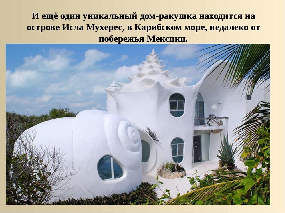 И ещё один уникальный дом-ракушка находится на острове Исла Мухерес, в Карибс...