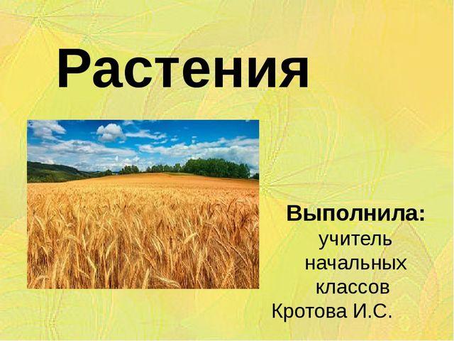 Растения поля Выполнила: учитель начальных классов Кротова И.С.