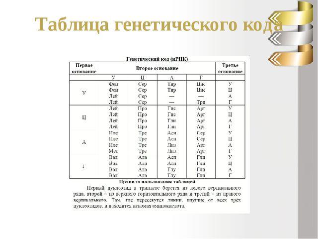 Решение задачи Последовательность нуклеотидов на и – РНК: ЦАЦАУАЦЦУУЦА 2. ант...