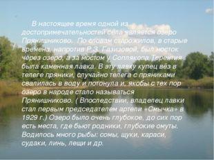 В настоящее время одной из достопримечательностей села является озеро Пряниш