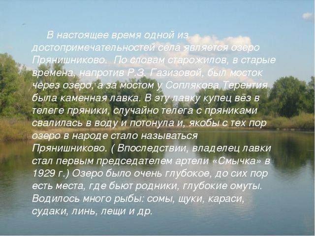 В настоящее время одной из достопримечательностей села является озеро Пряниш...