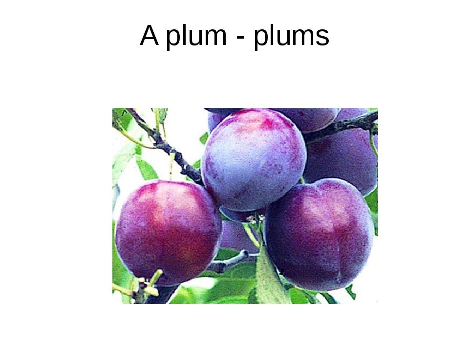 A plum - plums