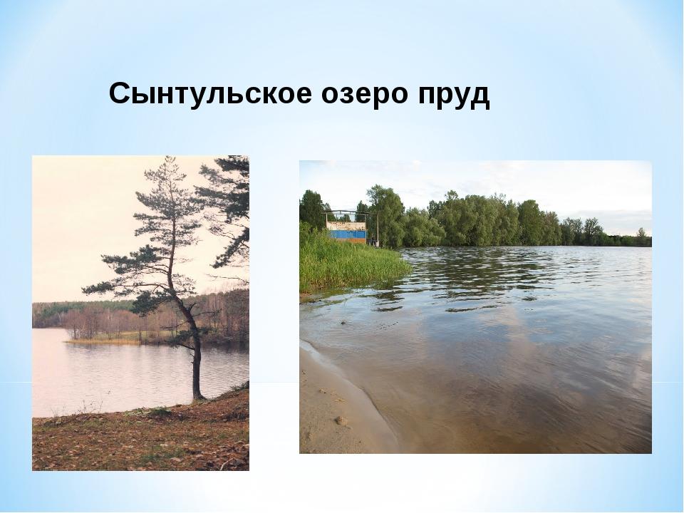 Сынтульское озеро пруд