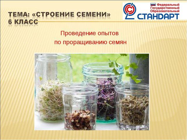 Проведение опытов по проращиванию семян