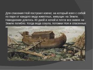 Для спасения Ной построил ковчег, на который взял с собой по паре от каждого