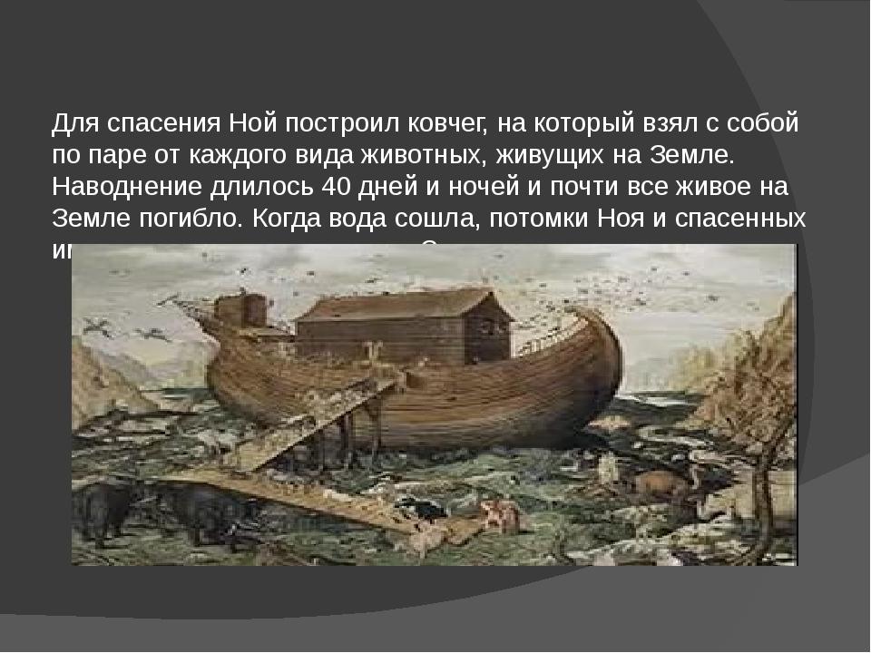 Для спасения Ной построил ковчег, на который взял с собой по паре от каждого...