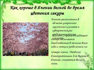 Как хорошо в Японии весной во время цветения сакуры Япония расположена в обла