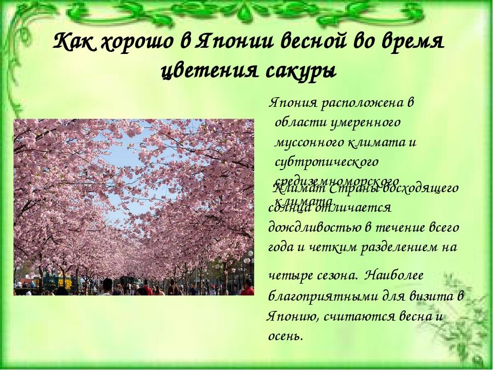Как хорошо в Японии весной во время цветения сакуры Япония расположена в обла...