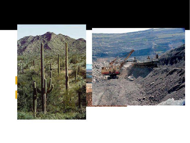 Природные ресурсы Мексики