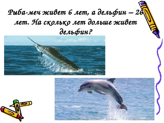 Рыба-меч живет 6 лет, а дельфин – 26 лет. На сколько лет дольше живет дельфин?
