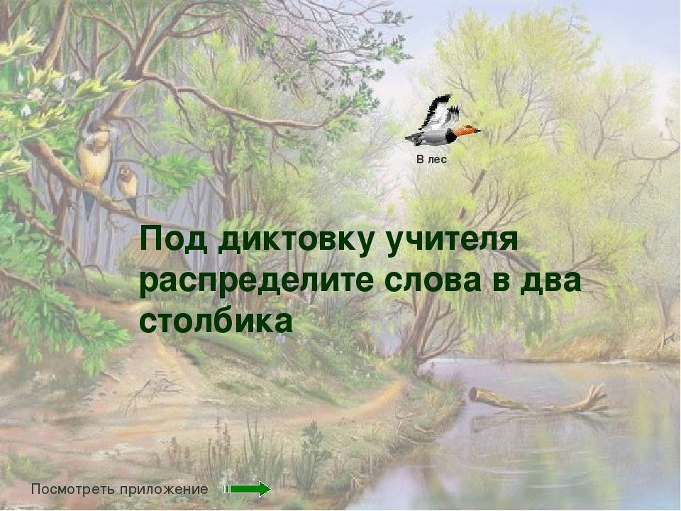 Под диктовку учителя распределите слова в два столбика В лес Посмотреть прило...