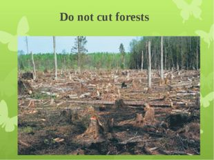 Do not cut forests