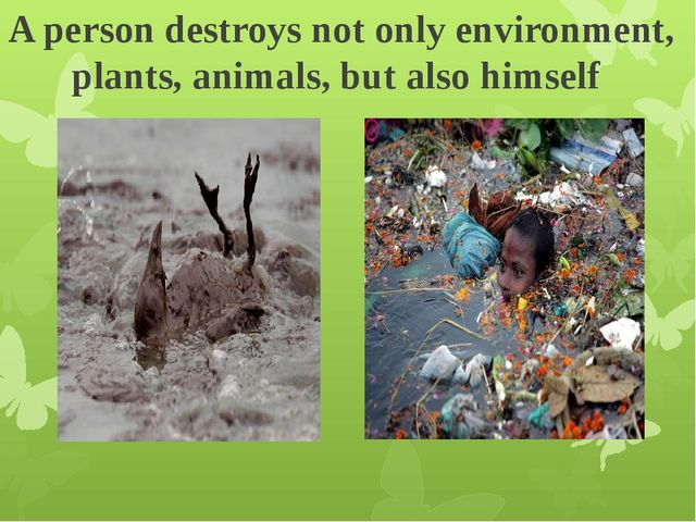 A person destroys not only environment, plants, animals, but also himself