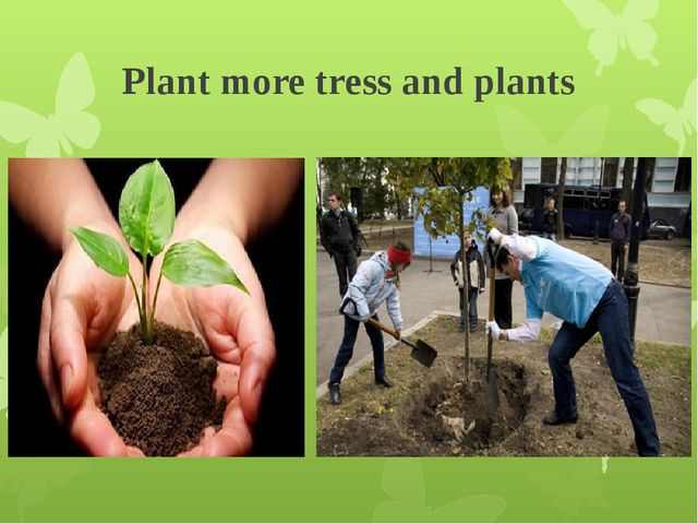 Plant more tress and plants