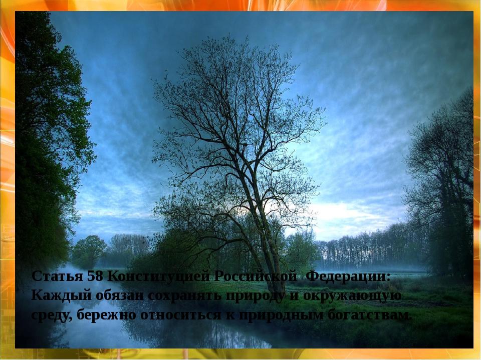 Статья 58 Конституцией Российской Федерации: Каждый обязан сохранять природу...