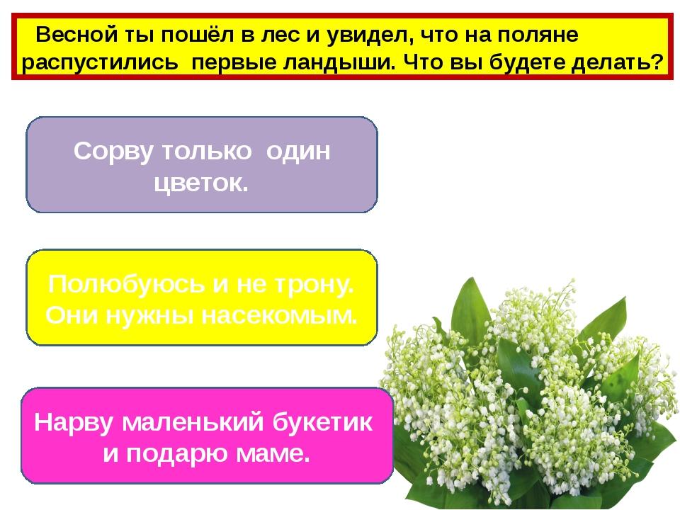Озеленяя город Починив подтекающий кран Изучая природу Бережное отношение к к...
