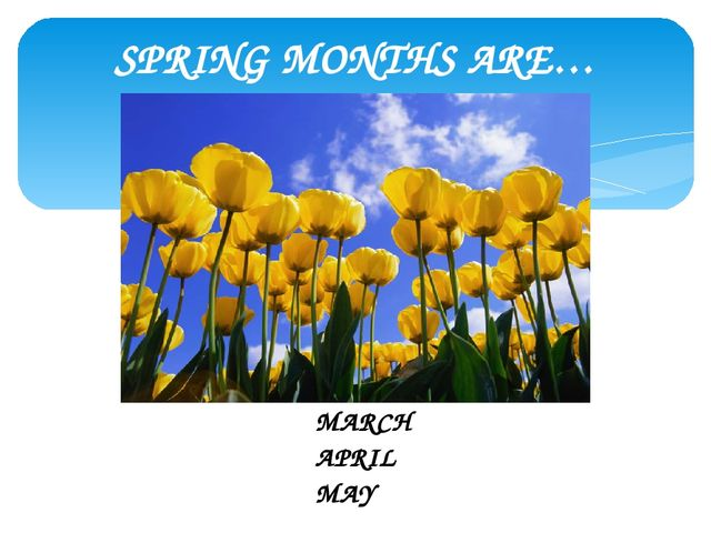 SPRING MONTHS ARE… MARCH APRIL MAY