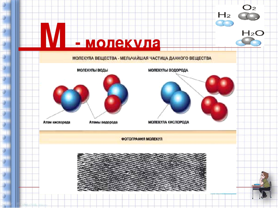 М - молекула