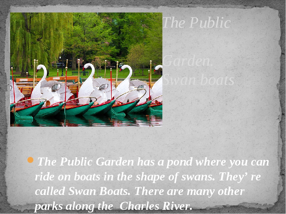 The Public Garden. Swan boats The Public Garden has a pond where you can ride...