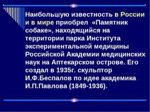 Наибольшую известность в России и в мире приобрел «Памятник собаке», находящ
