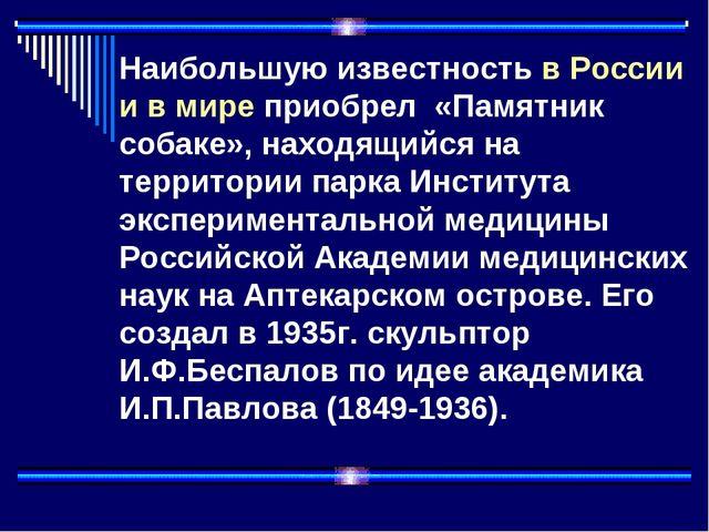 Наибольшую известность в России и в мире приобрел «Памятник собаке», находящ...