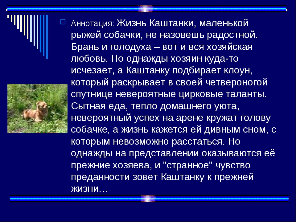 Аннотация: Жизнь Каштанки, маленькой рыжей собачки, не назовешь радостной. Бр...