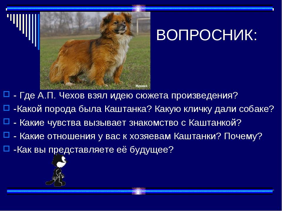 ВОПРОСНИК: - Где А.П. Чехов взял идею сюжета произведения? -Какой порода был...