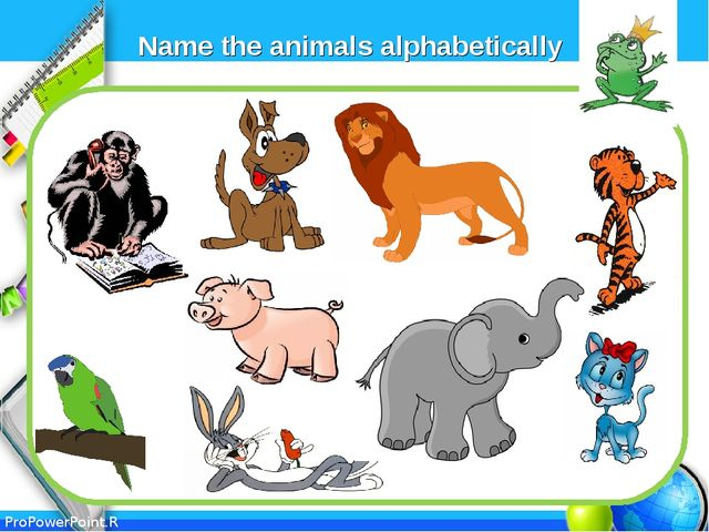 Name the animals alphabetically ProPowerPoint.Ru