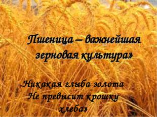 «Никакая глыба золота Не превысит крошку хлеба»