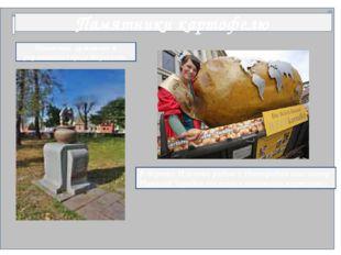 Памятники картофелю Памятник драникам в украинском городе Коростень В деревн