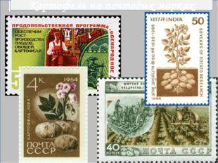 Картофель на почтовых марках