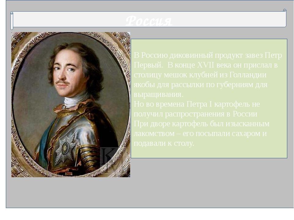 В Россию диковинный продукт завез Петр Первый. В конце XVII века он прислал...