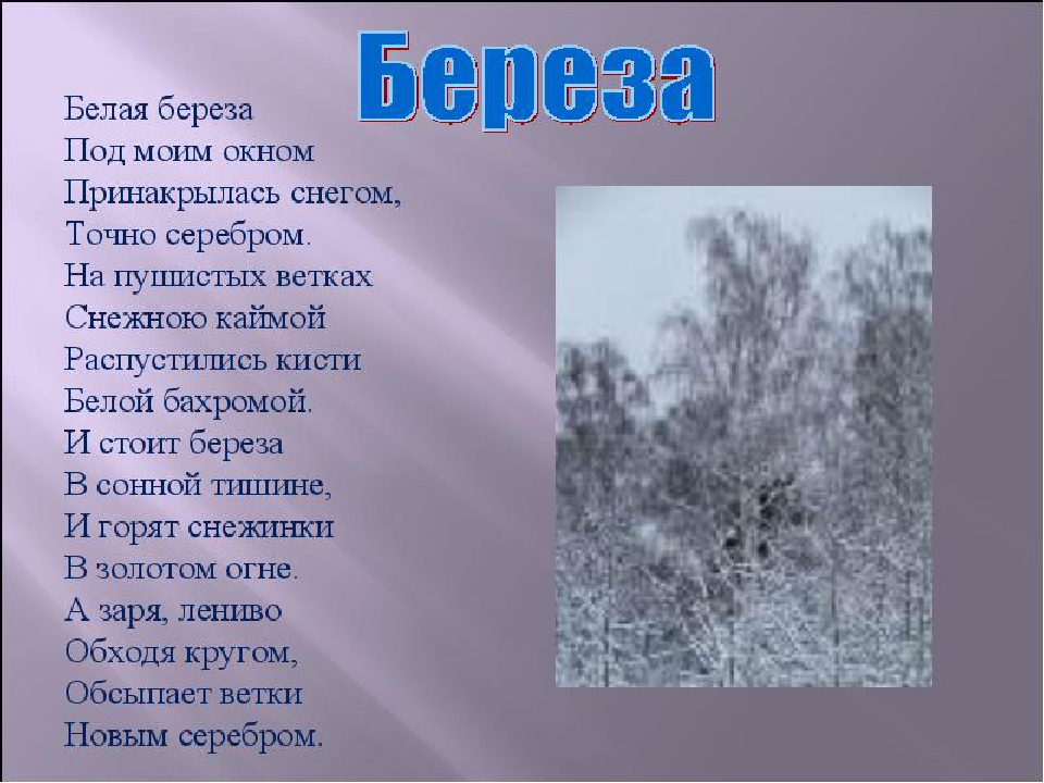 Стих есенина 6 букв на у