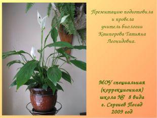 МОУ специальная (коррекционная) школа №7 8 вида г. Сергиев Посад 2009 год Пре