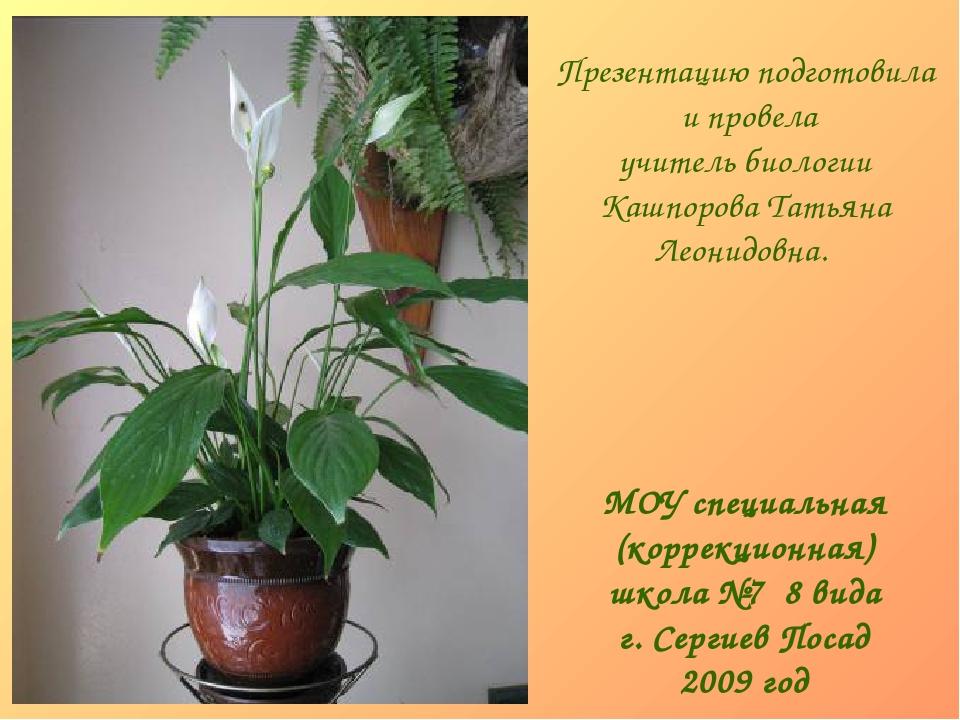 МОУ специальная (коррекционная) школа №7 8 вида г. Сергиев Посад 2009 год Пре...