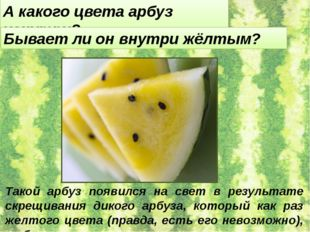 А какого цвета арбуз изнутри? Бывает ли он внутри жёлтым? Такой арбуз появилс