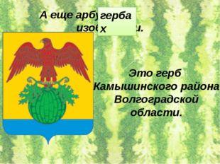 А еще арбуз на изобразили. гербах Это герб Камышинского района Волгоградской