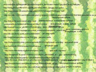 www.exkaryon.ru/images/files/textures/organics_flora/water-melon2.jpg - фон в