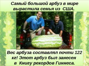 Самый большой арбуз в мире вырастила семья из США. Вес арбуза составлял почти