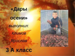 «Дары осени» выполнил: Климов Ярослав 3 А класс