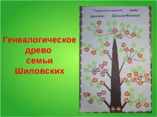 Генеалогическое древо семьи Шиловских