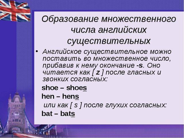 Образование множественного числа английских существительных Английское сущест...