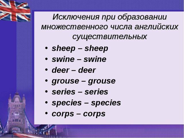 Исключения при образовании множественного числа английских существительных sh...