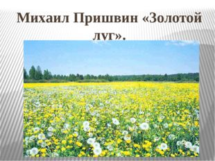 Михаил Пришвин «Золотой луг».