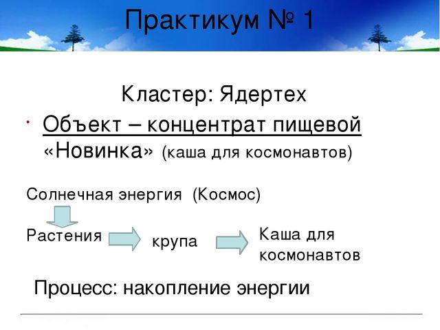 Практикум № 1 Кластер: Ядертех Объект – концентрат пищевой «Новинка» (каша дл...