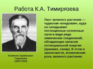 Работа К.А. Тимирязева Климент Аркадьевич Тимирязев (1843-1920) Лист зеленого