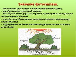 Значение фотосинтеза. - обеспечение всего живого органическими веществами; -