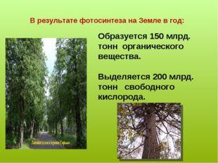 В результате фотосинтеза на Земле в год: Образуется 150 млрд. тонн органическ